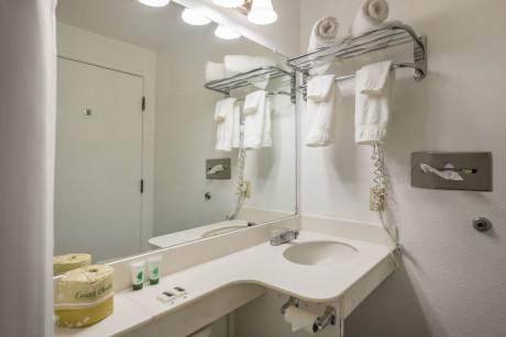 Travel Inn Sunnyvale - Bathroom